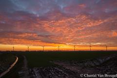 zonsondergang 20-01-2019 (Chantal van Breugel) Tags: landschap zonsondergang kleuren windmolens ijselmeerdijk flevoland noordoostpolder januari 2019 canon5dmark111 canon24105