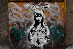 White rabbit (michael_hamburg69) Tags: barcelona spain spanien barcelone barcelonés barcelonesa barcellona espagne españa spagna xībānyá katalonien catalonia cataluña streetart urbanart graffiti art artdecarrer arteurbano whiterabbit girl