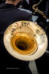 Reflejo dorado II (sebastianburoncervantes) Tags: reflejo dorado reflejodorado trompa instrumento metal instrumentometal instrumentodeviento musico saxo saxofon cono vientometal