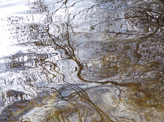 Reflections on the water (dramadiva1) Tags: