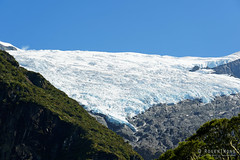 20190207-24-Rob Roy Glacier (Roger T Wong) Tags: 2019 nz newzealand robroyglacier rogertwong sel24105g sony24105 sonya7iii sonyalpha7iii sonyfe24105mmf4goss sonyilce7m3 southisland westmatukitukivalley bushwalk glacier hike landscape outdoors tramp trek walk