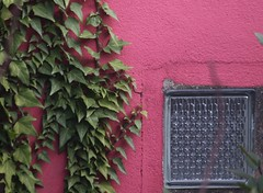 (fabhuleux) Tags: rouge vert green red mur wall paris romainville france canon