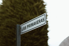Las Primaveras (cata.spv) Tags: cementery patagonia chile canon canont5 canon1200d 50mm 35mm photography photographer photo spring austral south sur landscape holiday vacations life green direction