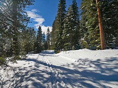 mp1130786BendCloudyDay-Pondo2 (thom52) Tags: thom bend central oregon xc skiing snow sno park meissner