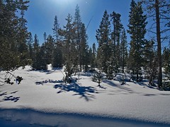 mp1130783MorningGlow (thom52) Tags: thom bend central oregon xc skiing snow sno park meissner