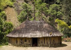 Traditional House In Goroka Area, Western Highlands, Papua New Guinea (Eric Lafforgue) Tags: countryside culture day decoration festival goroka highlands hills horizontal house img7252 indigenousculture menhouse nopeople nobody papuanewguinea road street thatchedroof traditionalclothing tribal tribe village