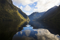Rippled (Matt Champlin) Tags: newzealand travel amazing sound fjords canon 2018 boat boating cruise life winter beautiful mountains green lush growing exotic reflection calm calming