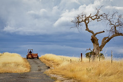 Home Before the Storm (Randy Bayne) Tags: away clouds country dead grass landscape road storm stormy tractor tree yellow