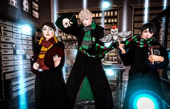 It takes a great deal of bravery to stand up to our enemies, but just as much to stand up to our friends (Chiaki♪) Tags: secondlife harrypotter london magic wizard hogwarts cast wand sl story movie theme bff cosplay gryffindor hufflepuff revenclaw slytherin