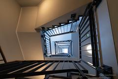 Up (Frank Guschmann) Tags: treppe treppenhaus staircase stairwell escaliers stairs stufen steps architektur frankguschmann nikond500 d500 nikon