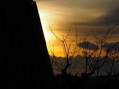 Savannah? (VauGio) Tags: tamron14150 olympus omd10 omd10mkii sunset tramonto savannah savana chieri piemonte piedmont italy italia controluce colori colour colore colours lacittàmetropolitanaditorinovistadavoi