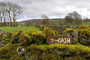 Path (Gerry Hat Trick) Tags: wednesdaywalk walking walk hiking hike troughofbowland footpath sign green wall hills hill moss slaidburn p20lite huawei fells path wednesdaywalkers newton lancashire northwest uk england