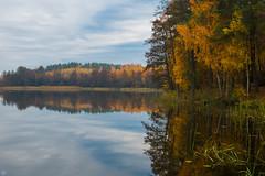 Autumn Reflections (Slav.Burn) Tags: beautifulcolors autumn fall lake reflection pentaxart pentaxsmcda35mmf24 trees colors leaves