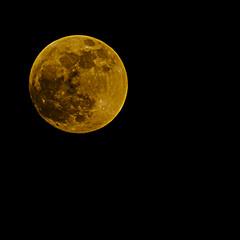 750.365-020   Blood Moon sort of. (ianbartlett) Tags: outdoor 365 moon