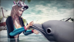*Advice from a dolphin: have a playful spirit, find someone you click with, be curious, glide through the day with ease and jump for joy* ❤ (Ⓐⓝⓖⓔⓛ (Angeleyes Roxley)) Tags: fashiowl poses dolphin spring flair sl event secondlife female water