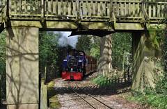 perrygrove railway (Martin Creese) Tags: perrygrove railway nikon d90 forest dean coleford april 2019 photography