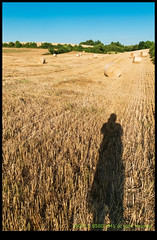 180711-8580-XM1.JPG (hopeless128) Tags: 2018 fields shadiow me self strawbales france haybales verteuilsurcharente charente fr