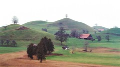 Green hills (stefan.bueti) Tags: nikonf3 kodakportra400 35mm analog house trees winter nature landscape view gree hills