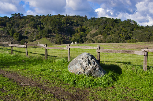 Rock and fence