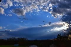 PSX_20180916_210803 (minititan37) Tags: sky blueskies nature clouds pretty trees sun