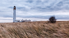 Windy Barns Ness (captures.in.time) Tags: scotland east lothian eastlothian britain uk greatbritain landscape landscapephotography seascape seascapephotography shore beach sea dunes lighthouse barnsness waves grass sky drama bush wind sun motion lee 6stop littlebigstopper canon canonphotography 6d eos6d