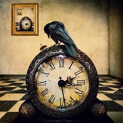 Crow Clock and Bug (Tartan Ranga) Tags: bird birds crow clock scene surreal quirky odd strange crazy fun