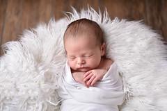 (gonzo.sux) Tags: newborn fur dream calm portrait girl softbox godoxad200 baby