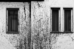 A Once White Wall (Isengardt) Tags: white wall weiss wand black schwarz bw sw monochrome fenster windows fassade blätter nature natur leaves putz haus house spiegelung reflection esslingen badenwürttemberg deutschland germany europe europa olympus omd em1 1250mm fensterbank windowsill vorhang curtain