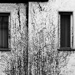 A Once White Wall thumbnail