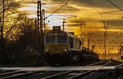 35_2019_02_14_Gelsenkirchen_Bismarck_1266_435_DB_247_035_ECR_mit_Brammenzug ➡️ Herne_Abzw_Crange (ruhrpott.sprinter) Tags: ruhrpott sprinter deutschland germany allmangne nrw ruhrgebiet gelsenkirchen lokomotive locomotives eisenbahn railroad rail zug train reisezug passenger güter cargo freight fret bismarck db ccw de efm eh eloc hctor rpool pkpc spag 323 0077 0275 0632 1225 1265 1266 1275 3294 6145 6156 6185 6186 6189 6241 9123 9124 captrain ecr ell hectorrail lotos setg spitzke museumszug schrottzug logo natur outdoor graffiti wildgänse flugzeug sonnenuntergang airbus 380