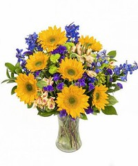 Five New Thoughts About Kids Birthday Flowers That Will Turn Your World Upside Down   kids birthday flowers (franklin_randy) Tags: birthday flowers