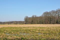 2019 België 0028 Achel (porochelt) Tags: achel belgië b limburg belgium belgien belgique bélgica