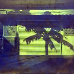 2228 Shuttered (Monobod 1) Tags: camerachalange holga120 cfn expired fujireala 100 c41 epsonv800 toy camera