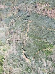 IMG_8056 (wallygrom) Tags: madeira funchal monte botanicalgarden jardimbotânicodamadeira cablecar teleferico