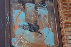 C215_8918 cité Robespierre Vitry (meuh1246) Tags: streetart animaux c215 citérobespierre vitry vitrysurseine oiseau