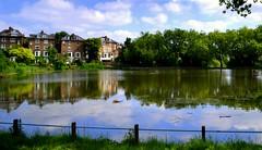 The loveliest place (giuliaph.) Tags: london londra hampsteadheath uk unitedkingdom inghilterra nikond3100 nikon lake