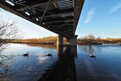 FB184266 E-M5ii 7mm iso200 f8 1_160s 0 (Mel Stephens) Tags: 20181118 201811 2018 q4 3x2 6x4 wide widescreen olympus mzuiko mft microfourthirds m43 714mm pro omd em5ii ii mirrorless gps structure bridge water river uk scotland garmouth moray spey best