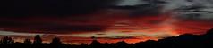 Sunset 1 16 19 #19_stitch (Az Skies Photography) Tags: sun sky skyline skyscape rio rico arizona az riorico rioricoaz arizonasky arizonaskyline arizonaskyscape cloud clouds red orange gold salmon black january 16 2019 january162019 11619 1162019 canon eos 80d canoneos80d eos80d canon80d set sunset dusk twilight nightfall arizonasunset panorama