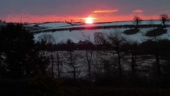 March sunrise: as seen from the front door (ronmcbride66) Tags: sunrise dawn landscape sun horizon skyline trees lake codown pylons larch frozenlake morninghasbroken hedges drumlins coth coth5