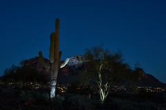 2019-02-23 19-07-30_085_Tamron SP 35-80 f2.8-3.8 01A (wNG555) Tags: 2019 arizona phoenix apachejunction apachetrail superstitionmountain superstitionwilderness tamronsp3580mmf283801a a7ii sony