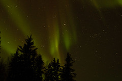 March Madness-111 (juan_guthrie) Tags: northernlights yellowknife nwt aurora
