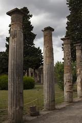 (Nose in a book) Tags: holiday italy pompeii pompeiiscavi casadelfauno columns