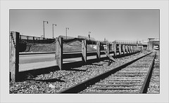 Trackside (Timothy Valentine) Tags: 2017 blackandwhite large railway friday 0317 fence newbedford massachusetts unitedstates us