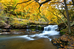 Dunloup Creek (DirtyDeeble67) Tags: nps nationalpark nationalparkservice thurmond westvirginia wv hiking hike nature naturewalk fayettecounty newrivergorge dunloupcreek creek fall autumn nikon d7500 dlsr nikond7500 photography photograph photo longexposure longexposurephotography exposure explore exploring discover travel traveling adventure adventuring ghosttown water waterfall
