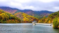 Lake in Jirisan National Park (South Korea) (patuffel) Tags: jirisan national park south korea lake foliage autumn leica m10 cloud 28mm gogije reservoir sky forest maple leaf leafes tree colour color