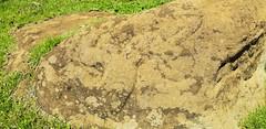 20181213_154557 (jaglazier) Tags: 121318 16thcentury18thcentury 16thcenturyad18thcenturyad 2018 animist chile copyright2018jamesaferguson crafts december easterisland grass images makemake petroglyphs plants polynesian ranokau rapanui rockart stoneworking volcanos art birdmen idols reliefs religion rituals sculpture tuff volcanicrock valparaisoregion