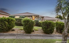3 Salignus Court, Narre Warren VIC