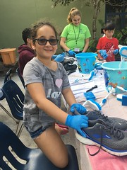 """Lori Sklar Mitzvah Day 2019 • <a style=""""font-size:0.8em;"""" href=""""http://www.flickr.com/photos/76341308@N05/33353171418/"""" target=""""_blank"""">View on Flickr</a>"""