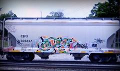 (timetomakethepasta) Tags: chek shear relic busy halt freight train graffiti art grainer hopper cefx