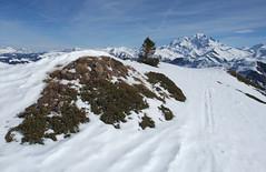 DSCF3716 (Laurent Lebois ©) Tags: laurentlebois france nature montagne mountain montana alpes alps alpen paysage landscape пейзаж paisaje savoie beaufortain pierramenta arèchesbeaufort